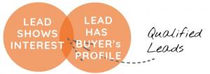 Pardot Lead Interest and lead profile